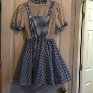 Adult Dorothy Costume standard size